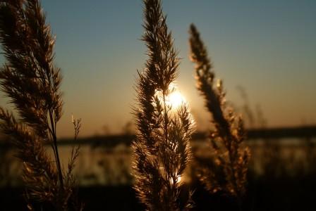 sunset-193304_1280